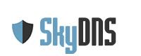 ������������ �������� SkyDNS, 2.4
