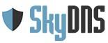 ���-������ SkyDNS ����� (��� ��������������� ���������� � ���������)