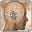Effecton Studio Effecton — Школьный тест умственного развития