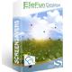 EleFun Multimedia Солнечная поляна — Анимированная Заставка