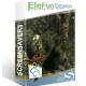 EleFun Multimedia Болотная Змея — Анимированная Заставка