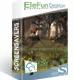 EleFun Multimedia В глубине леса — Анимированная Заставка