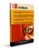 AKVIS ArtWork 4.0
