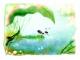 Изображение программы: Анимационный фильм «Муравейка» (Анимационные Технологии)