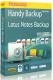 Изображение программы: Бэкап Lotus Notes для Handy Backup (Новософт)