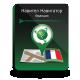 Навител Навигатор. Франция для автонавигаторов на Win CE