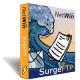 Netwin Ltd. SurgeFTP