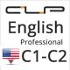 Центр языковой психологии «Professional» английского языка