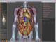 Виртуальная Анатомия
