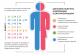 Диспансеризация определенных групп взрослого населения. Сетевая версия 4.0