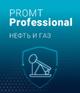 PROMT Professional Нефть и газ 19