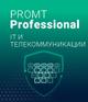PROMT Professional IT и телекоммуникации 19