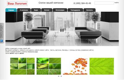 Скриншот программы «Сайт» Атилект 8.3