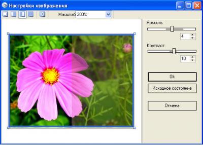 Скриншот программы RiDoc 4.5.0.2