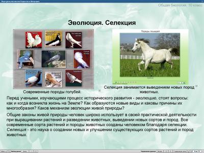 Скриншот программы Уроки биологии Кирилла и Мефодия. 10 класс Версия 2.1.6