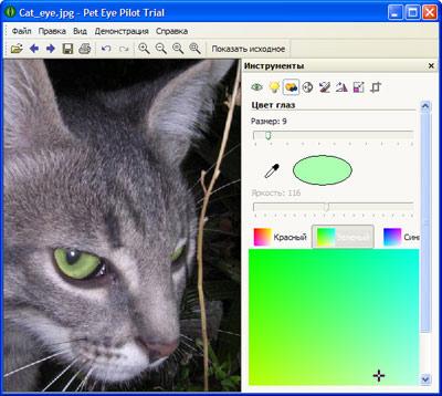 Скриншот программы Pet Eye Pilot 3.10.0