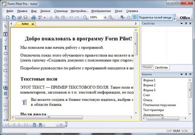 Скриншот программы Form Pilot Pro 2.67