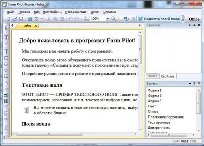 Скриншот программы Form Pilot Home 2.64