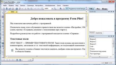 Скриншот программы Form Pilot Office 2.67