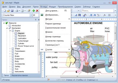 Скриншот программы Maple 8